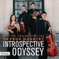 Introspective Odyssey