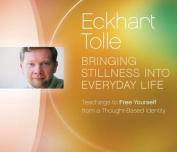 Bringing Stillness Into Everyday Life [Audio]