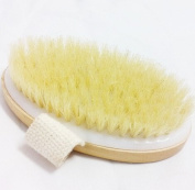 Healtheveryday® Dry Skin Body Brush - Improves Skin's Health And Beauty - Natural Bristle - Remove Dead Skin And Toxins, Cellulite Treatment , Improves Lymphatic Functions, Exfoliates, Stimulates Blood Circulation