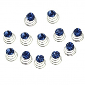 Newstarfactory Gorgeous Rhinestones Hair Spirals Clips Pack of One Dozen with Special Gift