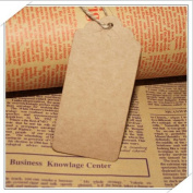 Kraft Paper Tags 4.5X9.5 Favour Lolly Wedding Party Gift Bag Name Label Brown+20M string