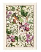 MAGNOLIA Cotton Kitchen Towel by Michel Design Works