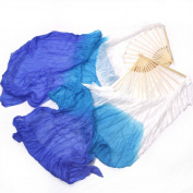 Belly Dancer Fan Veil | Azul y Ciel