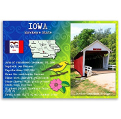 IOWA STATE FACTS postcard set of 20 identical postcards. Post cards Made in USA.