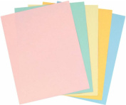 Staples Pastels Coloured Copy Paper, Assorted, 22cm x 28cm Letter Size, 9.1kg Density, 30% Recycled, Acid-Free, Pink Green Gold Blue Canary Yellow, 400 Total Sheets