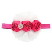 Sanwood Kids Baby Girl Flower Princess Lace Ribbon Elastic Headbands