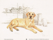 Yellow Labrador Print, Yellow Labrador Picture, Limited Edition Yellow Labrador Print By David Thompson DT8