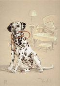 Dalmatian Print, Dalmatian Picture, Limited Edition Dalmatian Print By David Thompson DT4