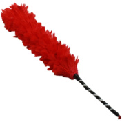 Red Funky Feather Duster
