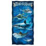 Sharks of the World Beach Towel
