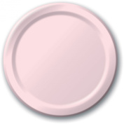 Creative Expressions Paper 23cm Dinner Plate 24-Pack