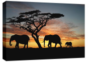 LARGE ELEPHANTS IN THE SUNSET AFRICA LANDSCAPE CANVAS PICTURE mounted and ready to hang 80cm x 50cm