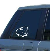 Guinea Pig Car Window Sticker Vinyl Decal - By SCA ART