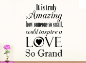Wall Vinyl Decal It is truly amazing how someone so small could inspire a love so grand nursery vinyl saying lettering wall art inspirational sign wall quote decor