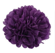 Generic Pack of 10 Dark purple Wedding Decorative Props Tissue Paper Pompoms Pom Poms Balls Wedding Party Home Decoration 10""