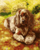 Wooden Framed Paint By Number Animals No Blending / No Mixing Linen Canvas DIY Painting - Happy Dog