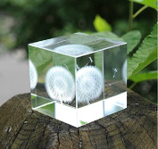 Berry President® Creative 3d Laser Etched Crystal Dandelion Cube Paperweight - Birthday Christmas Gift 6cm