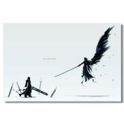 Final Fantasy VII Advent Children Silk Print