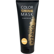 Artego Colour Shine Mask