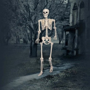 Pose-N-Stay 150cm (1.5M) Life-size Halloween Skeleton with Red LED Eyes