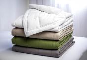 Hollander Waverly Peachy Down Alternative Blanket, Twin, Sage