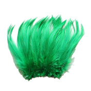 15cm - 20cm Rooster Hackle Coque Feathers for Crafting ~7.5g, 30ml