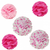 Allydrew 30cm & 20cm Set of 5 Tissue Pom Poms Party Decorations for Weddings, Birthday Parties Baby Showers and Nursery Décor, Hot Pink & Polka Dots
