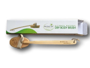 ULTIMATE DRY BODY BRUSH-100% Natural, Long Curved Handle, Detachable Head, Ideal to Improve Circulation, Detox, Reduce Cellulite, Glowing Skin. FREE Travel Pouch. 100.