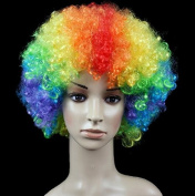 Colour Anime Festival Cosplay Hair for Show Party Cosers Wig Fans Curly Explosion Hair Round Clown