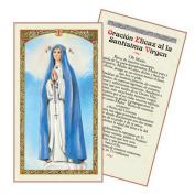 Oracion a La Santisima Virgen Del Pozo Tarjeta Plastificada Y Bendecida Por Su Santidad