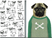 Pug Notebooks Set of 2 A5 Sized Notebooks