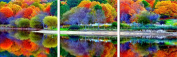 All Forest Colours in Water Reflection Canvas Wall Art, 5 Stars Gift Set of 3 Total 90cm x 240cm Startonight
