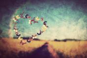 Daydream Butterflies Love Canvas Wall Art, 5 Stars Gift Startonight 60cm x 90cm