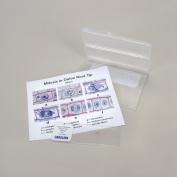 Onion Mitosis Self-Study Kit - Microscope Slides