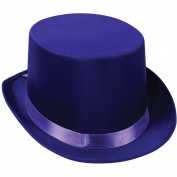 Satin Sleek Top Hat (purple) Party Accessory