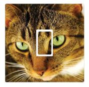 Cat Novelty Vinyl Light Switch Cover Sticker