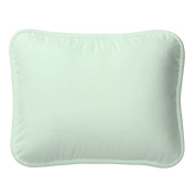 Solid Icy Mint Decorative Pillow