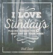 I Love Sundays Gift Book Book