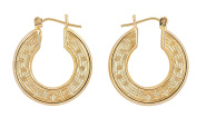 10kt Yellow Gold Hoop Earrings 2 Grammes