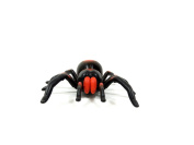 Team R/C® Remote Control Infrared Spider with Lights