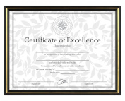 Burnes of Boston Document Frame, 22cm by 28cm , Black and Gold