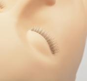 LashArt 5 Pairs Training Lashes (separation +application) Eyelash Extension Training Aid For Mannequin Head