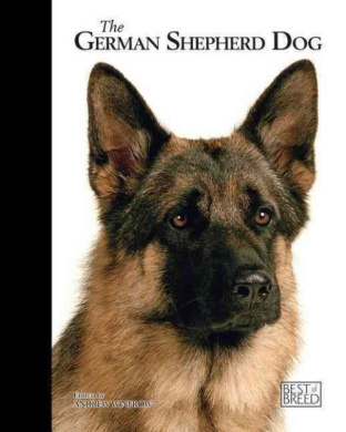 German Shepherd Dog: Best of Breed