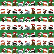 Entertaining with Caspari Continuous Roll of Gift Wrapping Paper, Christmas Peek A Boo, 2.4m, 2-Roll