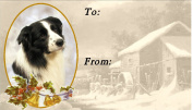 Border Collie Dog No. 1. Design Christmas Labels (42) - Self Adhesive