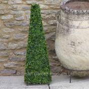Smart Garden 60cm Boxwood Obelisk