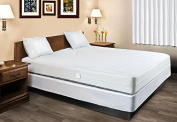 Waterproof Mattress Protector Encasement Hypoallergenic Bed Bugs Proof
