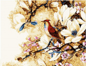 Wooden Framed Paint By Number Animals No Mixing / No Blending Canvas DIY Painting - Happy Bird