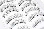 TheWin Pack of 20 Women Daily Party Makeup Fake Eyelash Natural