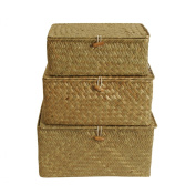 Wald Imports Trunks, Natural, Set of 3